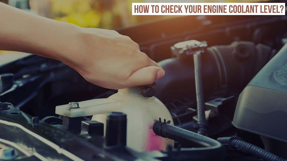 check car engine coolant level